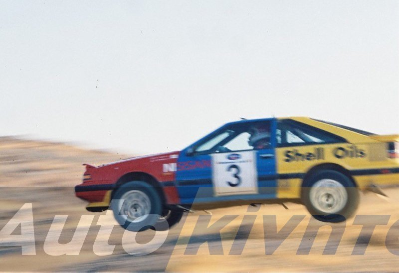 1989 PALM TREES RALLY